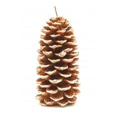 Lobloly Pinecone Giant